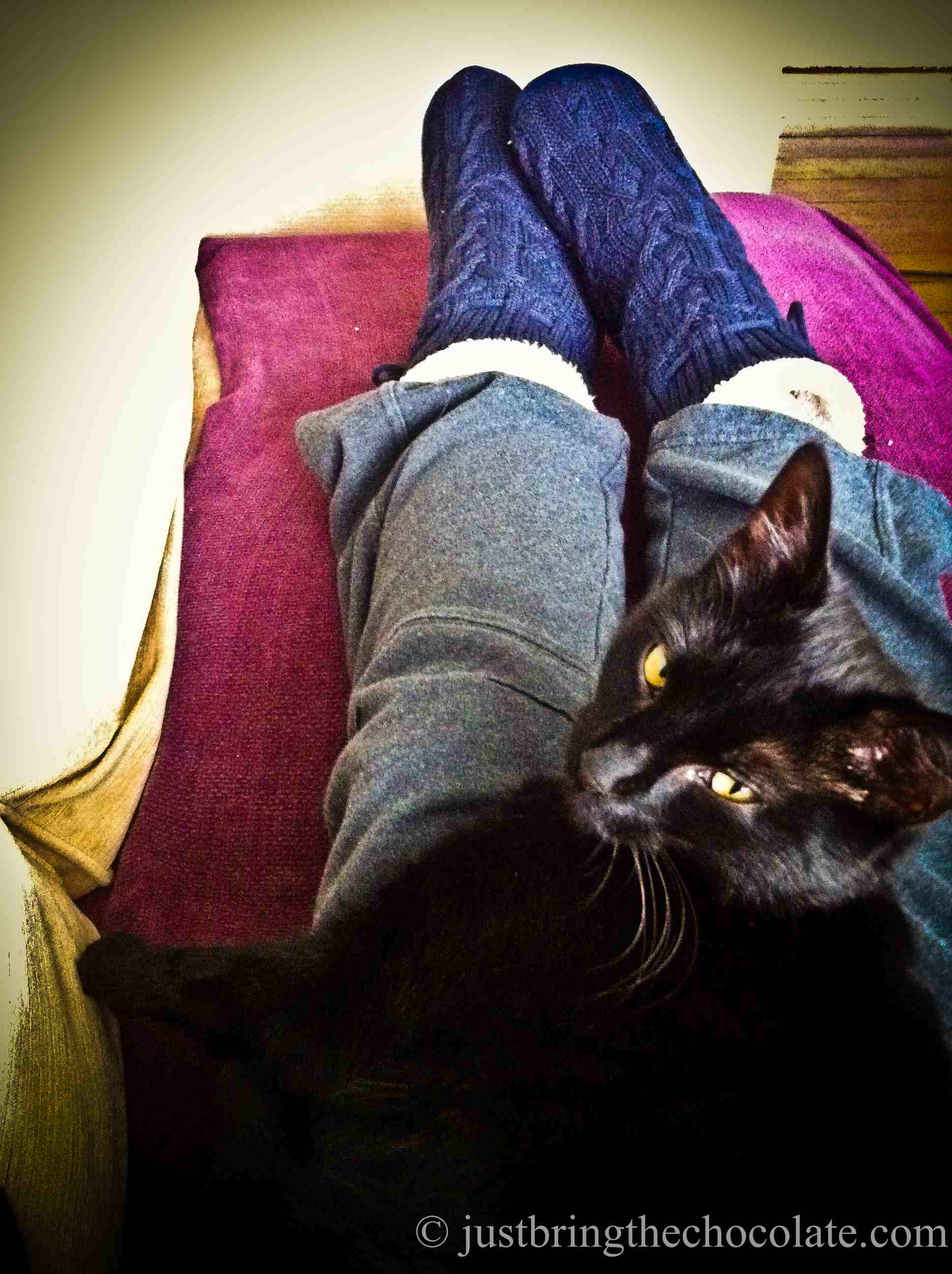 cat on lap and granny slippers